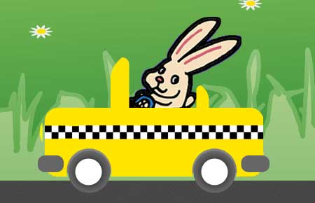 Try our Pet Taxi!